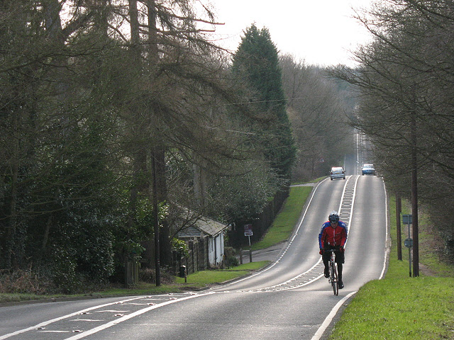 Dorking Road