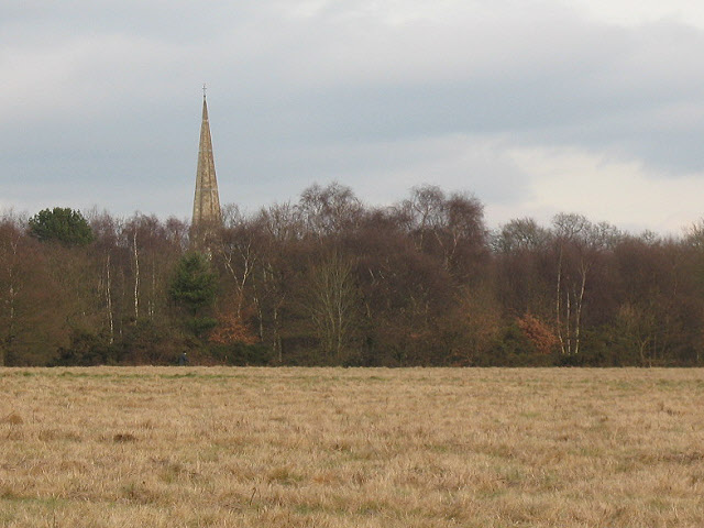 St Andrew's church from across the heath