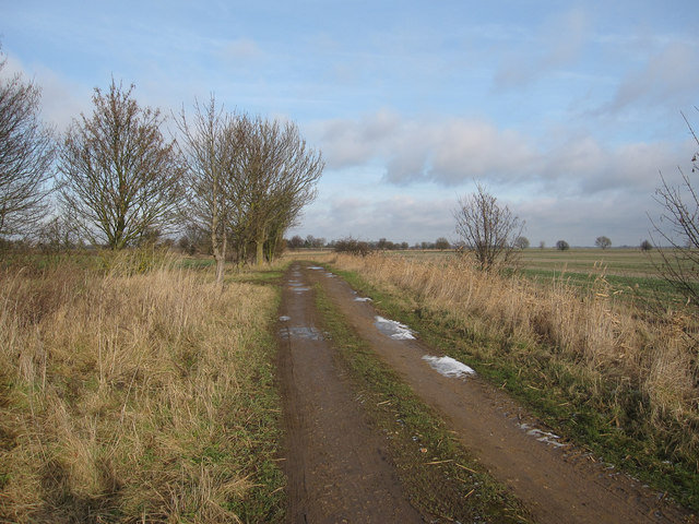 Coldham Bank byway