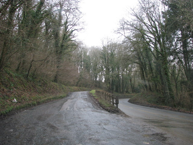 Oblique junction in the woods