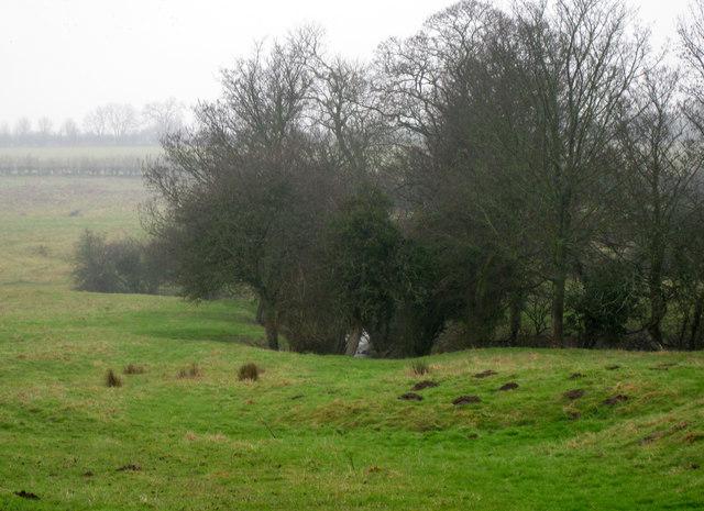 Watercourse across the field