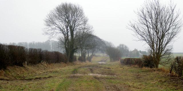 Bridleway towards Stoupes Cottage