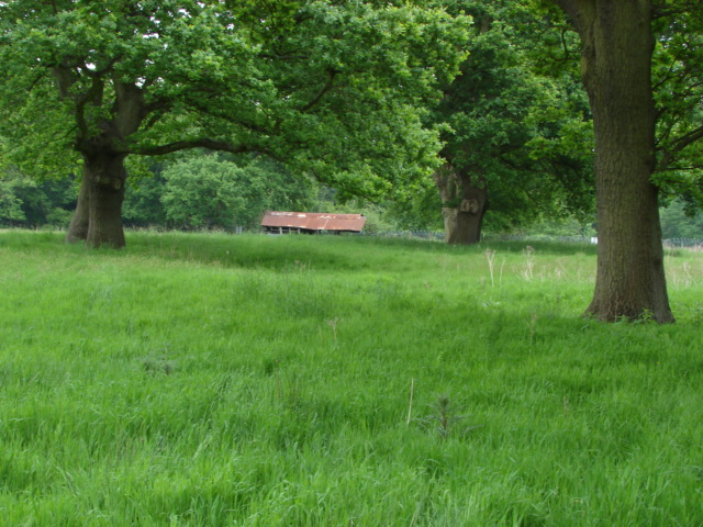 Hagthorne Meadows