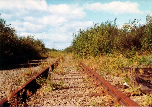 overgrown rail tracks, Braehead, 1977