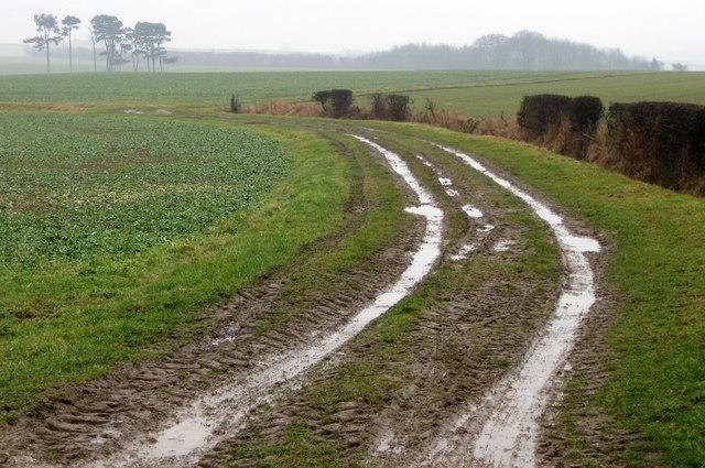Field access track