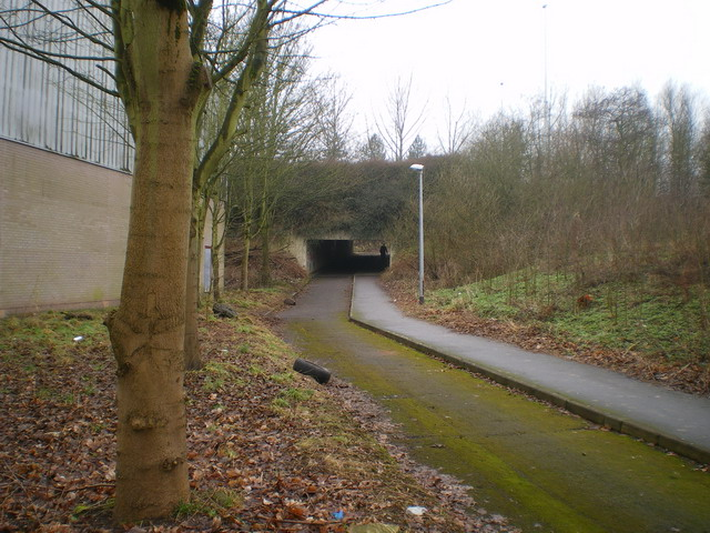 Underpass below the A442 Eastern Primary