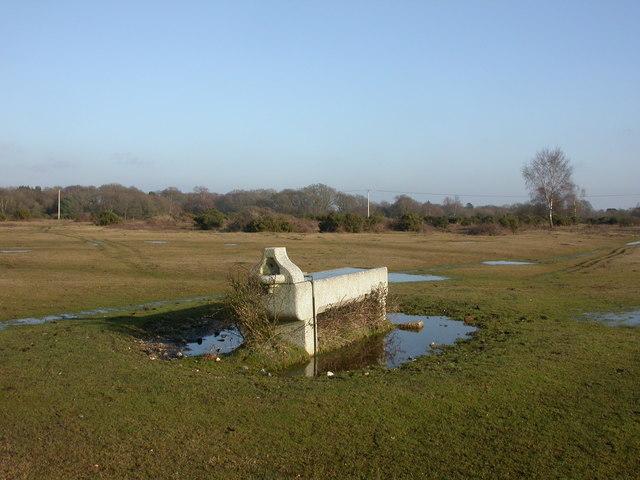 Wootton, horse trough
