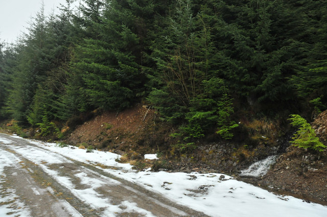 Allt na Criche running under the forestry road