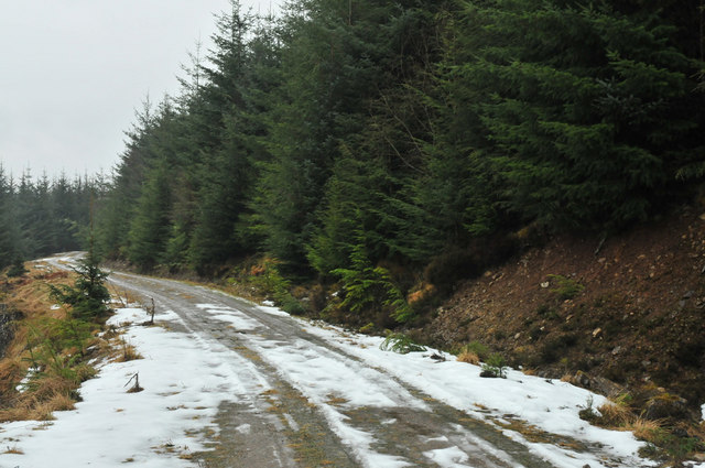 Icy forestry road in Lochletter Wood
