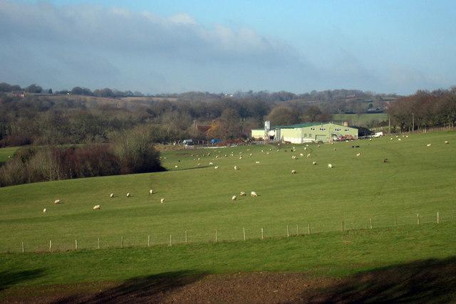 Lattenden's Farm, Ponts Green