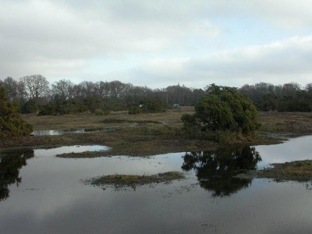 Wootton, heathland