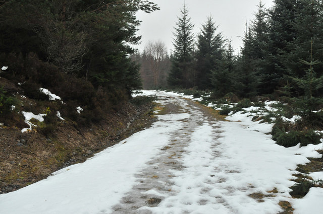 Snowy forest road near Shenval