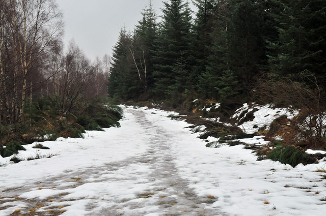 Snowy forest track near Shenval