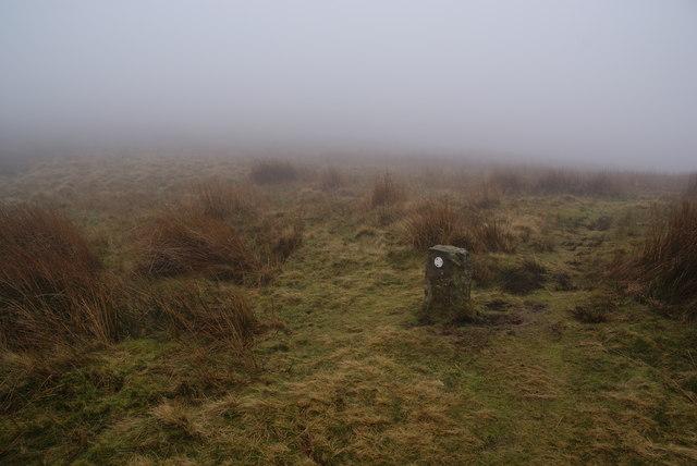 Footpath marker stone