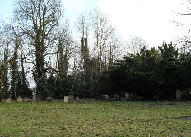 """Distant snopdrops in the """"new"""" churchyard at Treyford"""
