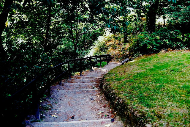 Glen Maye - Steps down into the glen to footpath
