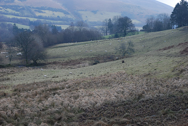 Grazing land near Pant-y-drain