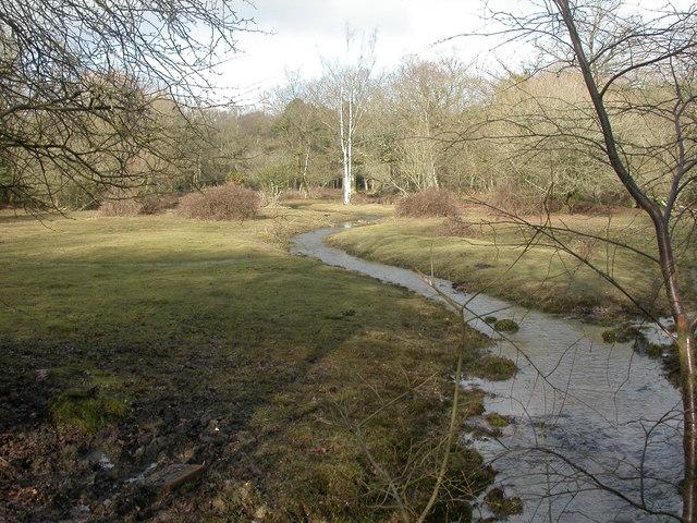 Wootton, Walkford Brook