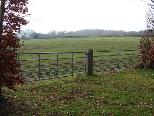 Entrance to arable land, near Pwllmeyric