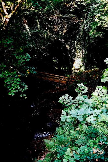 Glen Maye - Footbridge for footpath below