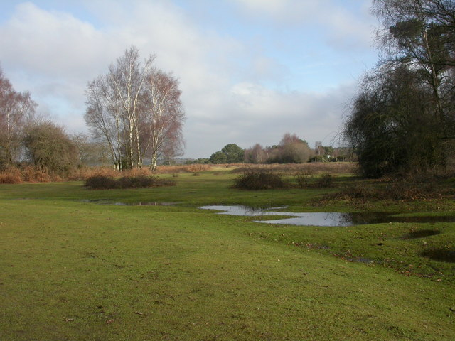 Hinton, Plain Heath