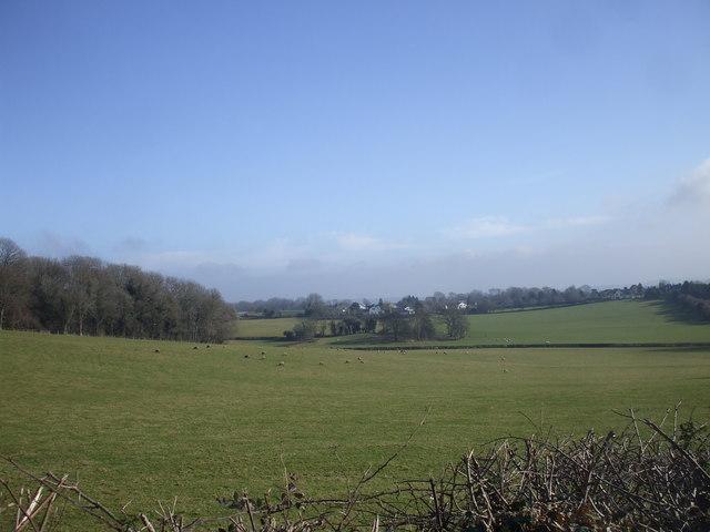Pastureland near Talgarth