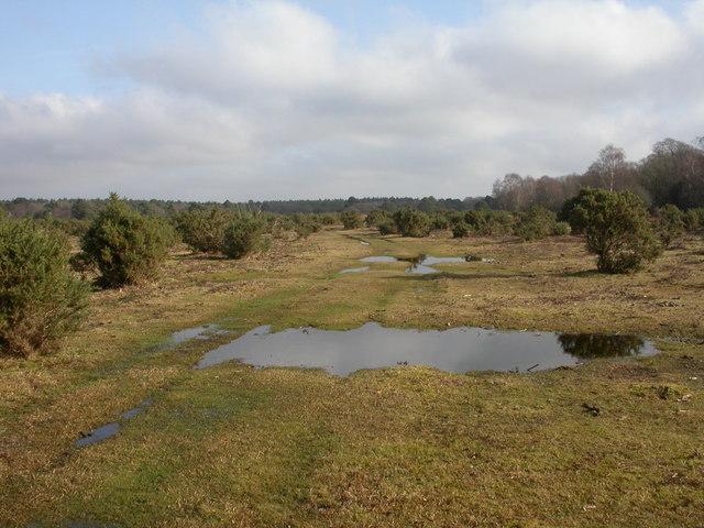 Plain Heath, track
