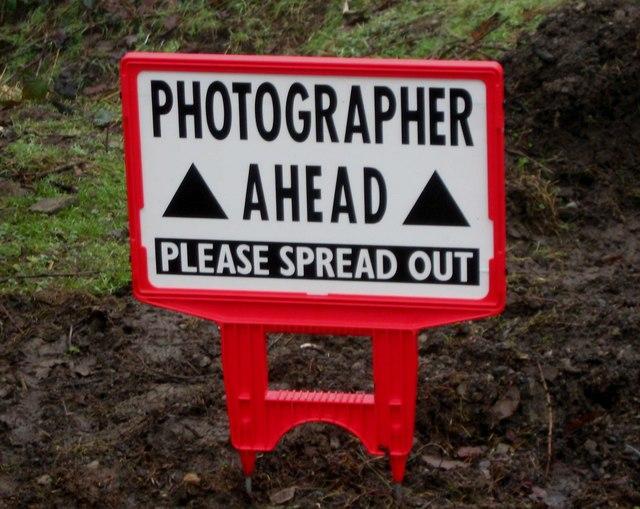 Danger - photographer ahead