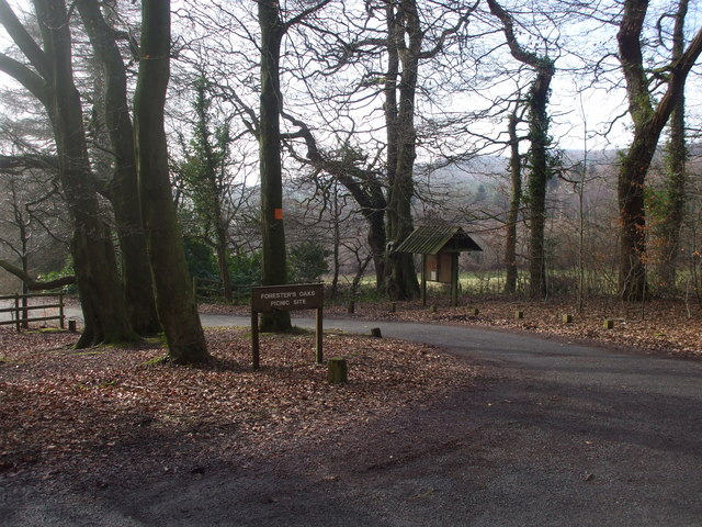 Entrance to Foresters Oaks picnic area