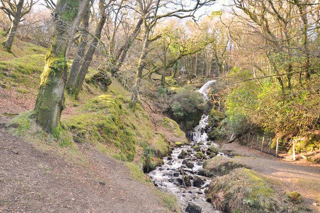 Overspill, Devonport Leat - Dartmoor  (I)