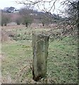 Dist:0.4km<br/>This might be an old march stone and may predate the straightening of the watercourses in the area which took place in the late 18th. century. The three holes in the side are intriguing.