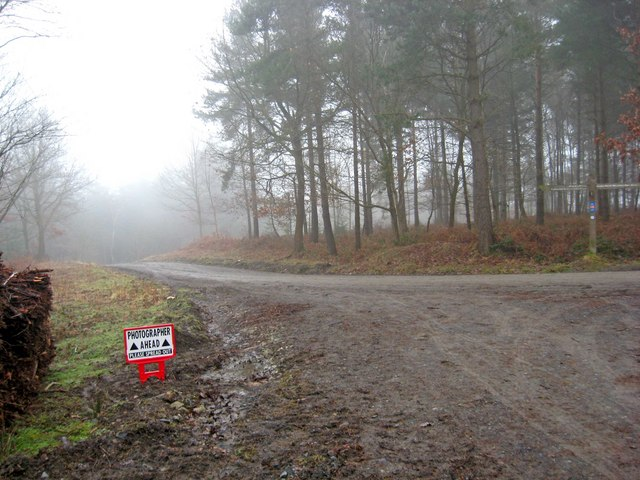 Wyre Forest designated spreading out area