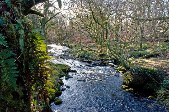 The River Meavy - Dartmoor