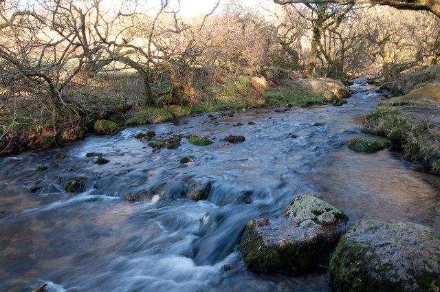 Stream from Newleycombe Lake - Dartmoor