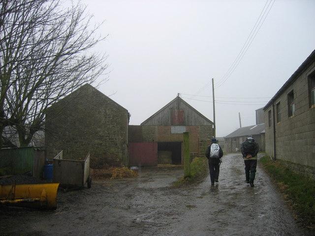 Footpath through Reenes Farm