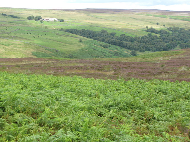 Middles and the valley of Burnhope Burn