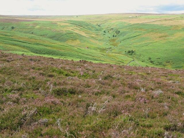 Moorland west of Adam's Cow
