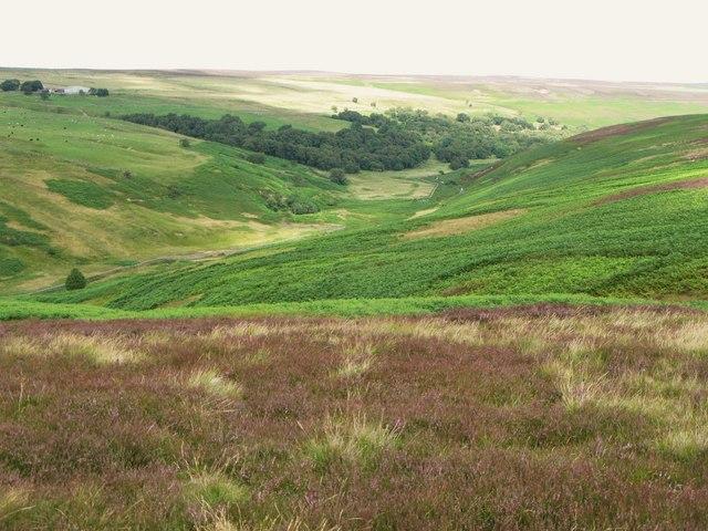 The valley of Burnhope Burn (2)