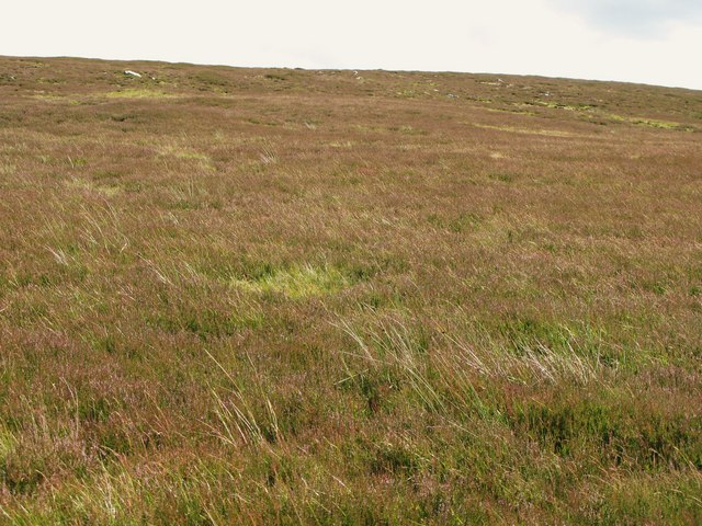Black Hill (4)