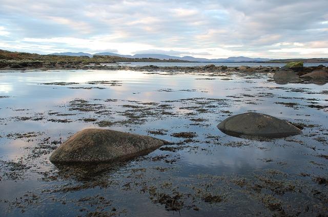 Rocks at slack tide