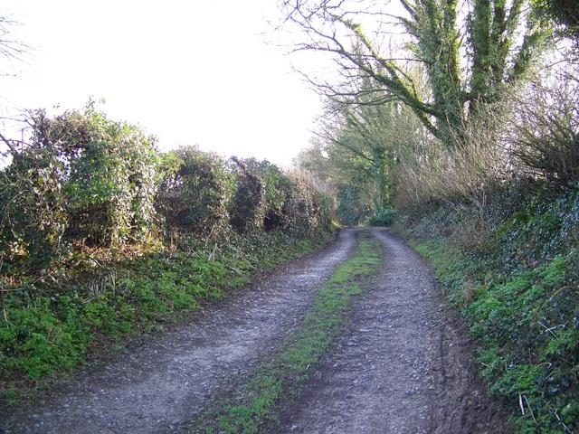 Track, Cucklington