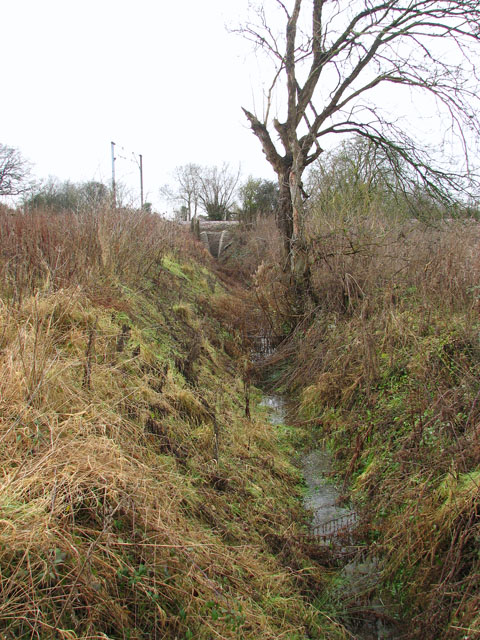 Ditch traversing meadow
