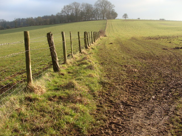 Field boundary near the Grondra