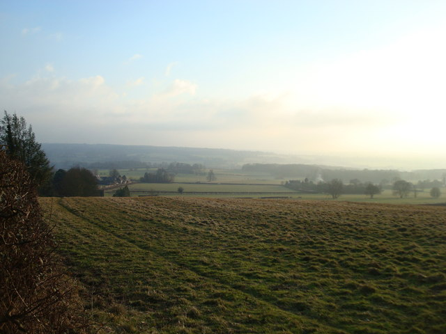Fields near Cotmans Ash