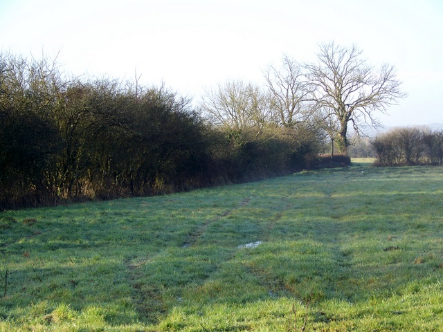 Footpath to Cucklington
