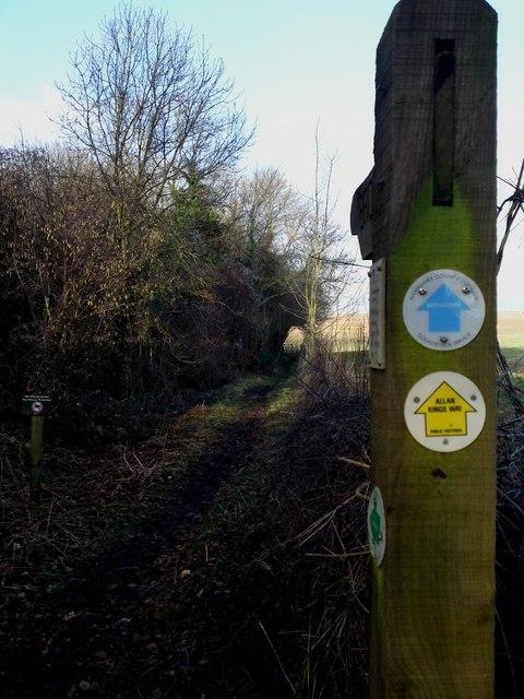 Kings Way path heading NE from Armsworth Lane