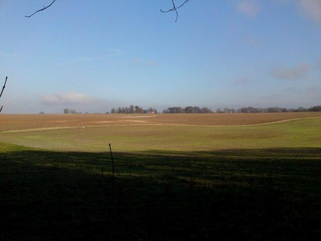 Looking NE from Kings Way path towards East Hoe Manor