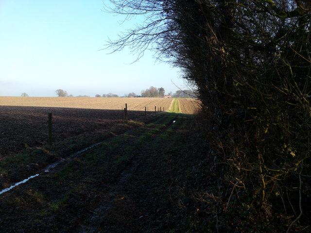 Wayfarer's Walk towards East Hoe Manor