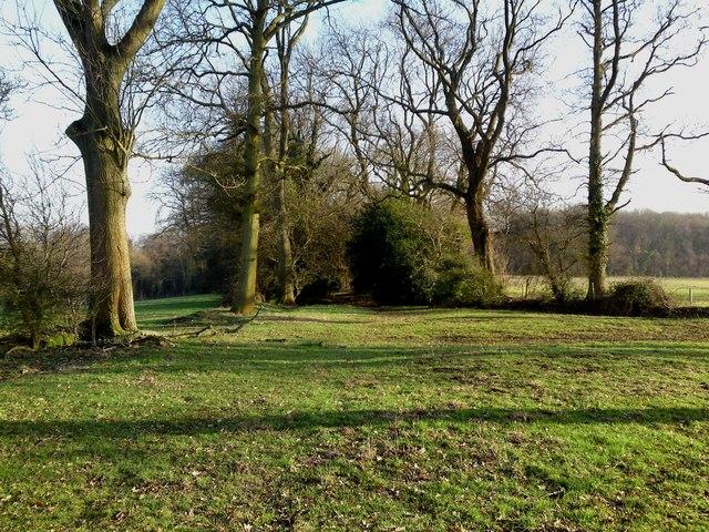 Wayfarer's Walk towards Hambledon