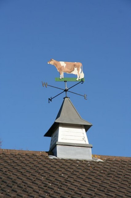 Jersey Cattle Society pavilion weather vane